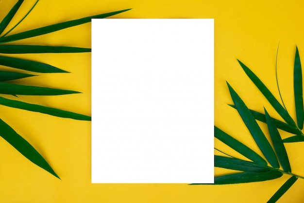 Tropical bamboo leaves with blank white paper