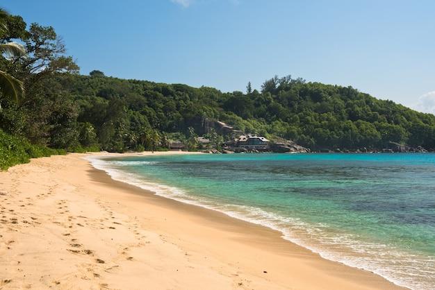 マヘ島セイシェルの熱帯のビーチ。