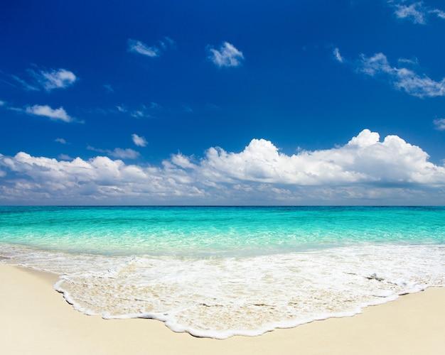 열대 해변 카리브해. 바다 풍경