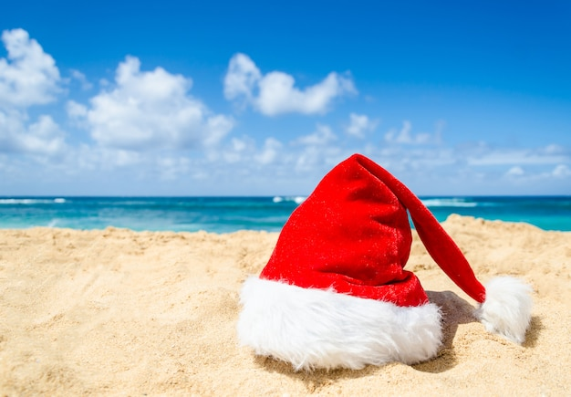 Tropical beach christmas and new year decoration