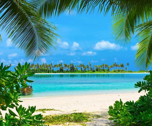 ヤシの木と青いラグーンがほとんどないモルディブの熱帯のビーチ