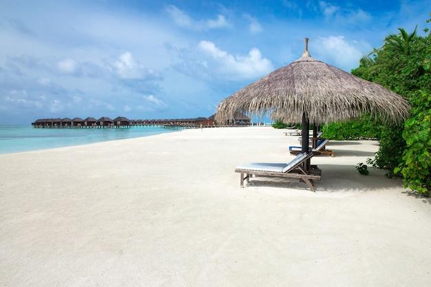 モルディブの熱帯のビーチ
