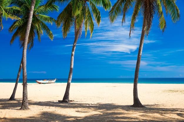 ヤシの木と青いラグーンの熱帯のビーチ