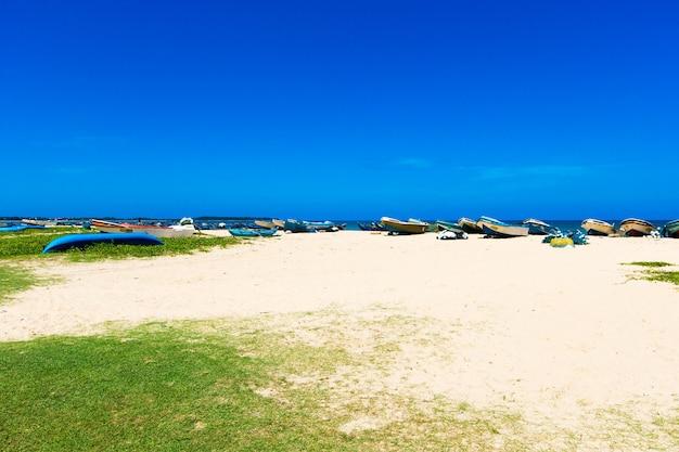 スリランカの熱帯のビーチ