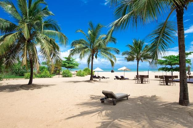 Тропический пляж на шри-ланке