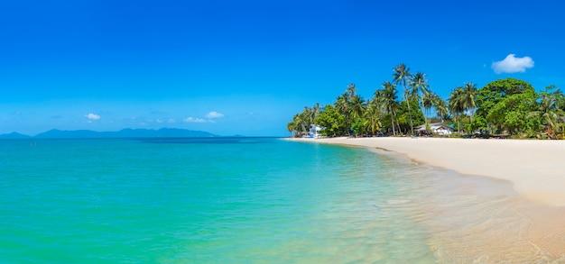 サムイの熱帯のビーチ