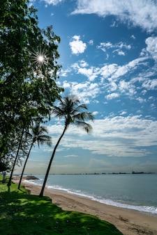 晴れた日の熱帯のビーチ。シンガポール、イーストコーストパーク