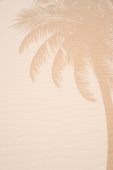 Тропический пляжный песок с тенями пальмовых листьев на фоне летних путешествий и каникул