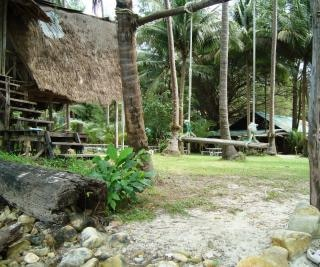 Tropical beach swing