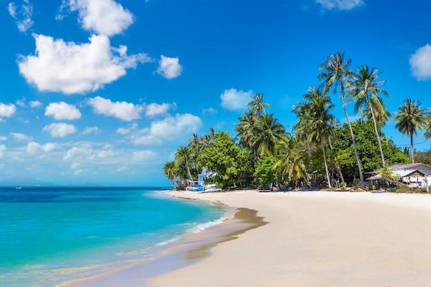 Тропический пляж с пальмами на острове самуи в таиланде