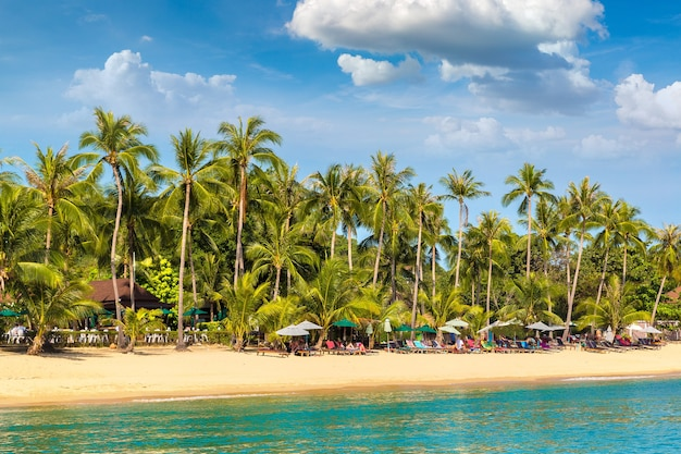 Тропический пляж с пальмами на острове самуи, таиланд Premium Фотографии