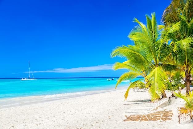 Тропический пляж с шезлонгами и пальмами