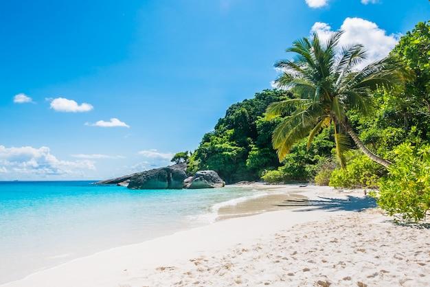 하얀 모래와 열 대 해변