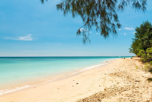열대 해변