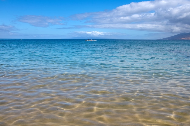 Tropical blue ocean in hawaii. summer sea in clean and clear water from surface for background. waves concept design.