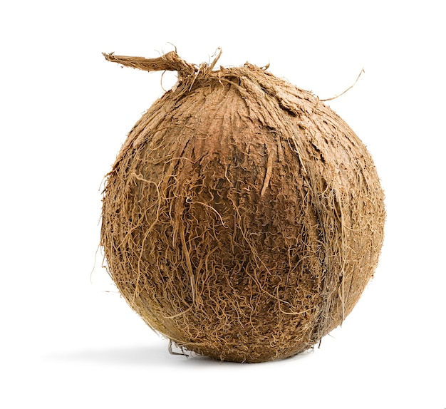 흰색 배경에 고립 된 열 대 코코넛 열매