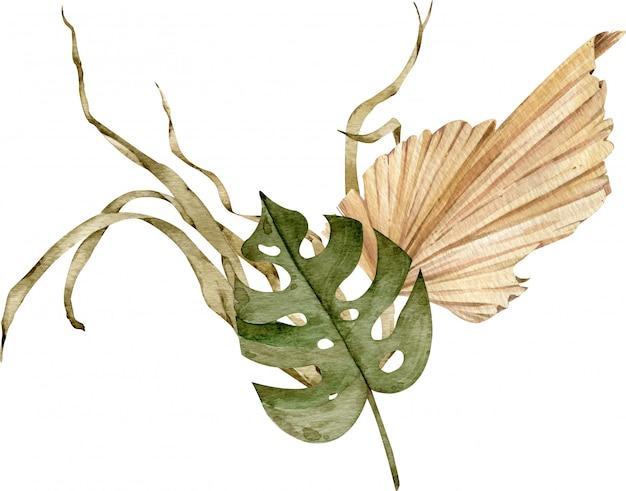 熱帯の組成物。水彩のエキゾチックなイラスト。カラフルな乾燥したヤシの葉。