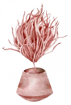 Tropical dried red plant in a ceramic vase. watercolor exotic illustration. colorful composition.