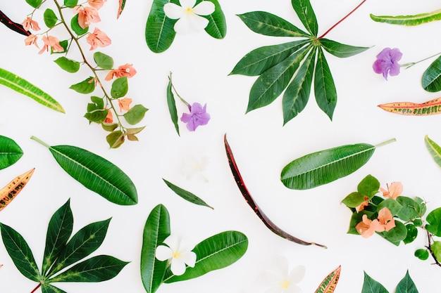 白い背景の上の熱帯のエキゾチックな色の葉のパターン。フラットレイ、上面図