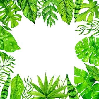 Тропическая экзотическая рамка листьев на белой предпосылке. акварельные иллюстрации
