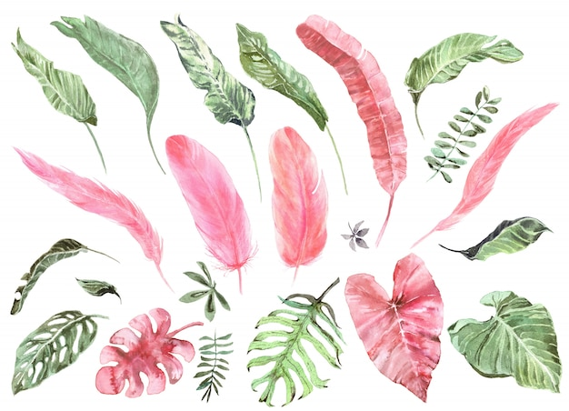 Tropical exotic leaves and pink flamingo feathers watercolor set
