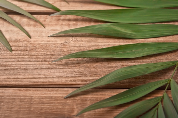Tropical exotic palm leaves on wooden table.