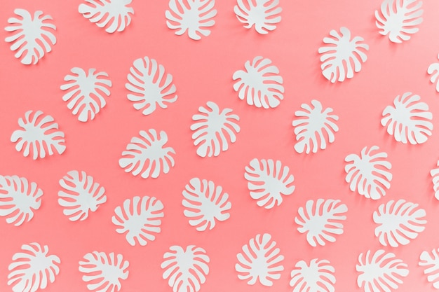 Tropical forest pattern with white monstera plant leaves on pink background