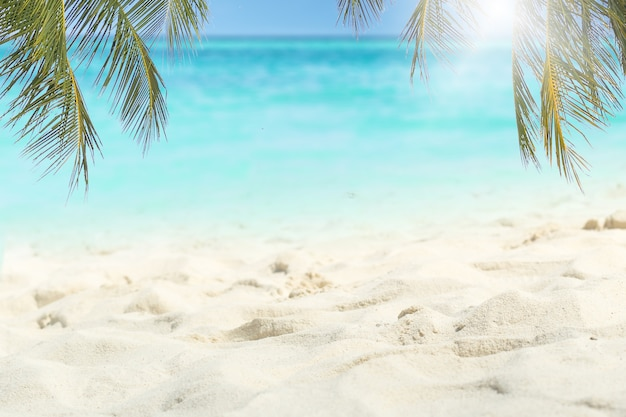 木製のテーブルと海の夏の背景に熱帯の新鮮なフルーツ