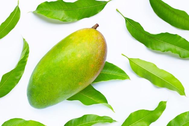 Тропические фрукты, зеленое манго с листьями. вид сверху