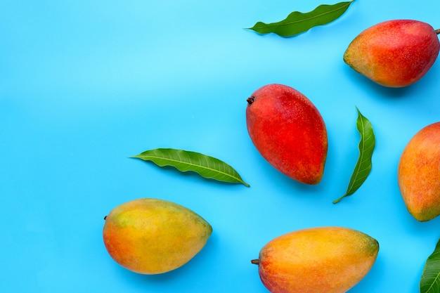 Tropical fruit, mango  on blue background.
