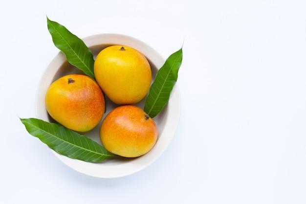 トロピカルフルーツ、白い背景の上のマンゴー。