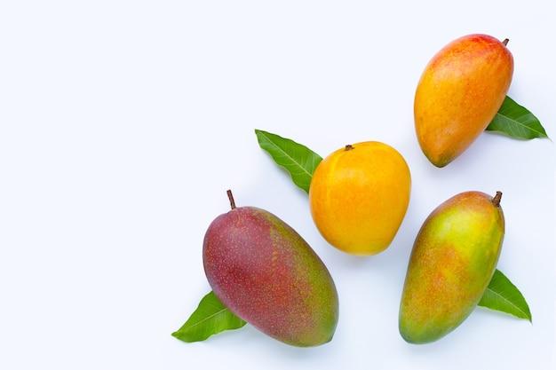 Тропические фрукты, манго на белом. вид сверху