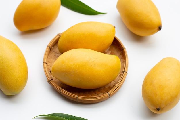 トロピカルフルーツ、白地にマンゴー