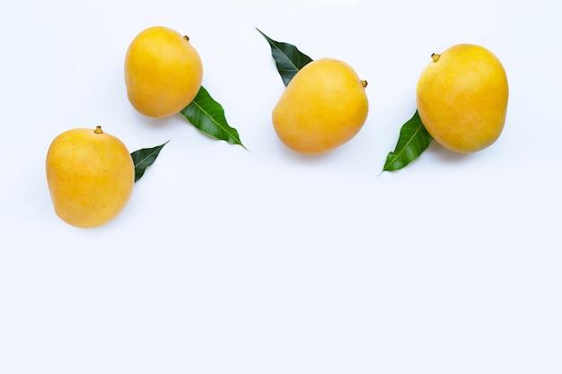 Tropical fruit, mango  top view