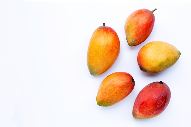 Tropical fruit, mango on white