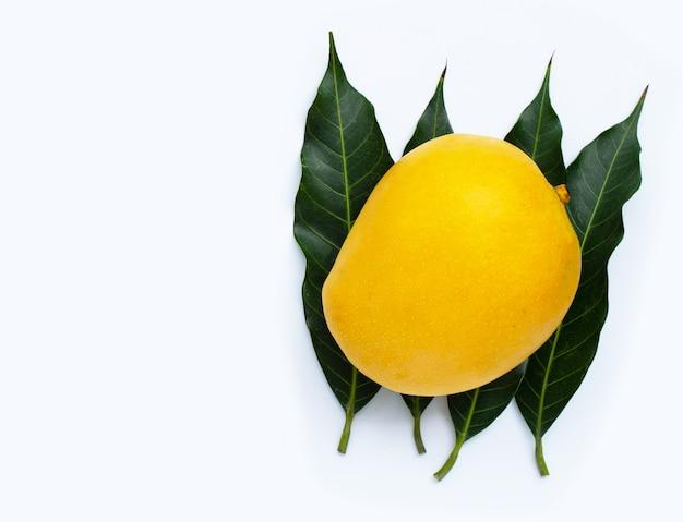 Тропические фрукты, манго с листьями. вид сверху