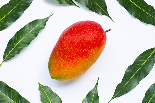 Tropical fruit, mango with leaves. top view
