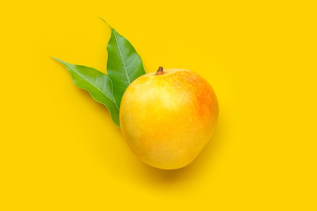 Tropical fruit, mango on yellow table. top view
