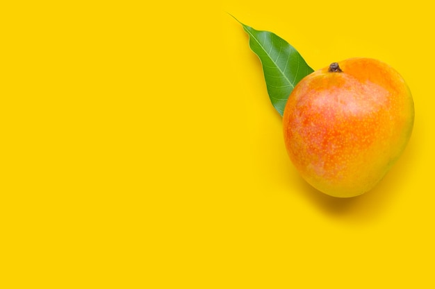 Tropical fruit, mango on yellow. top view
