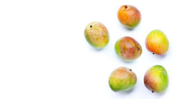 열 대 과일, 흰색 바탕에 원시 망고입니다.
