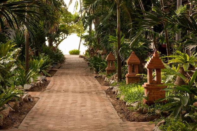 Giardino tropicale e la strada per la spiaggia del mare