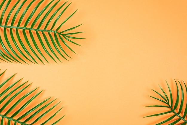 熱帯の緑の葉が横たわっていた