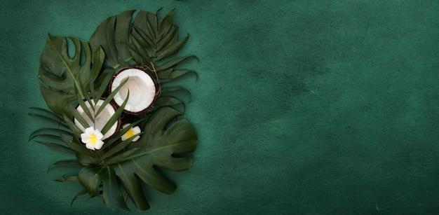 Тропические зеленые листья пальмовых листьев и кокосовых орехов