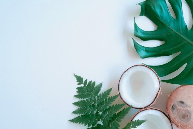 열 대 녹색 야자수 잎과 배경에 금이 코코넛 자연 개념 평면 누워