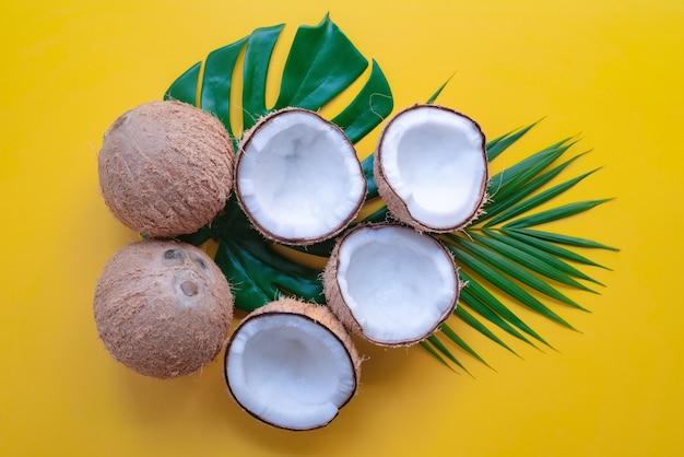 노란색 배경에 열대 녹색 야자수 잎과 금이 간 코코넛