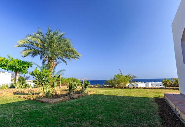 Tropical holiday resort set in neat manicured lawns egypt