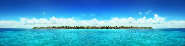 ヤシの木とビーチのパノラマを背景にした熱帯の島