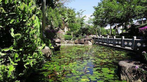 Тропический ландшафтный дизайн на заднем дворе. вид на небольшой пруд, кусты и зеленые пальмы