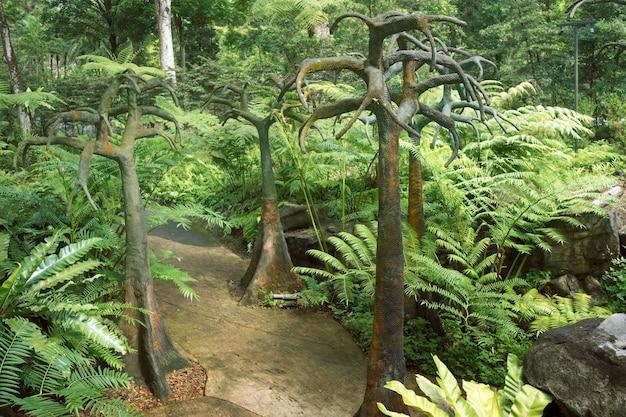 有名なシンガポール植物園の人工樹木と熱帯の風景