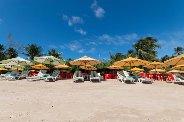Boipeba 바이아 브라질 섬에 코코넛 팜 비치와 열 대 풍경.